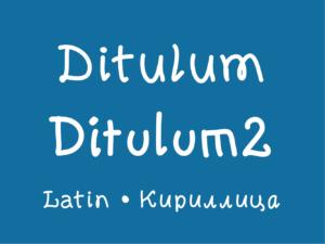 Ditulum