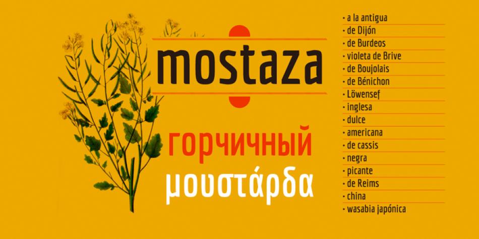Economica Cyrillic Pro